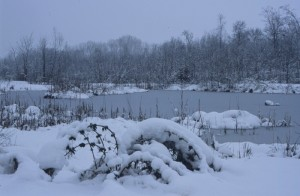 Inverno ai Goret