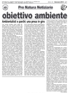 articolo obiettivo ambiente